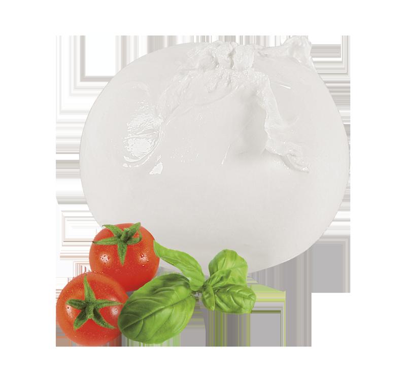 mozzarella pomodorini e basilico